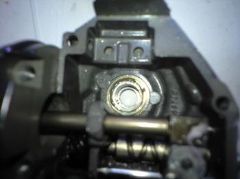 CA3A1290.JPG